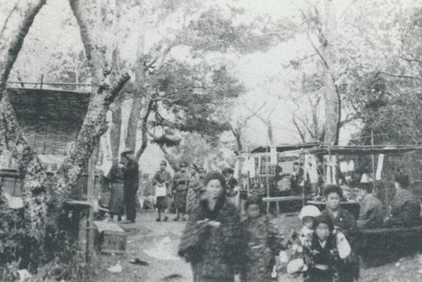花見客でにぎわう大正初期の小松三夜様(むかしの写真・土浦)