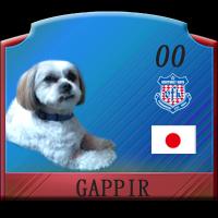 gappir3