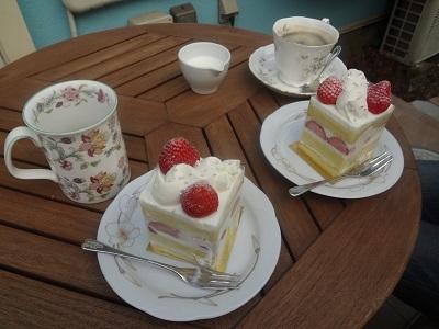 庭でカフェ気分(縮小)