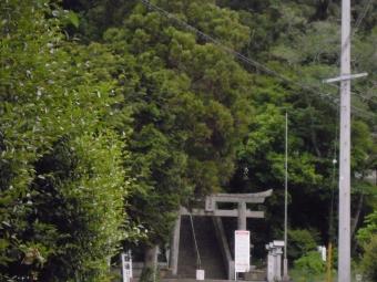 蓬莱園のつつじー1-170502