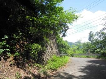 猿橋に向かう道ー1ゆっくり上って来た170528