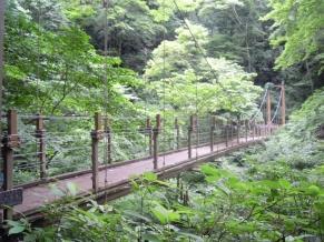 吊り橋170702