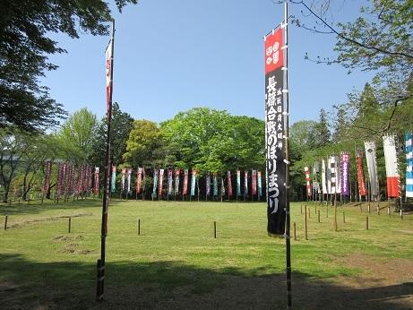 2長篠城のぼり祭り