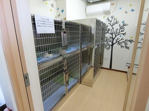 動物病院ペットホテル犬