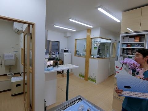 動物病院中央の部屋