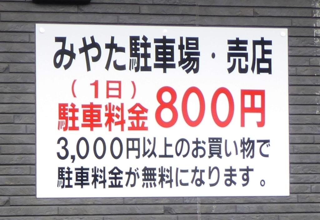 P11507699.jpg