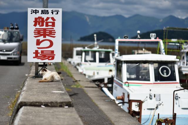 okishima14.jpg