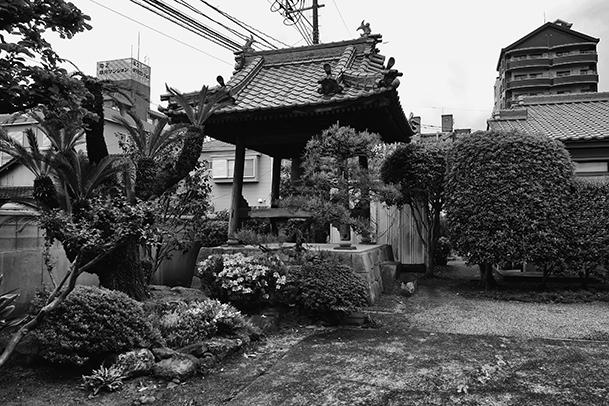 浄龍寺の中