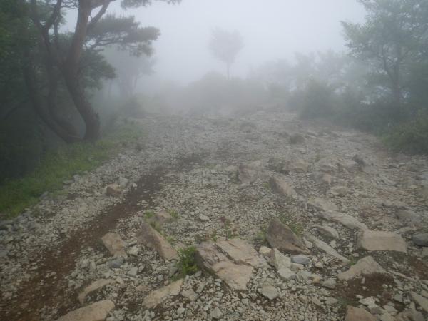 鍋割山・塔ノ岳 088