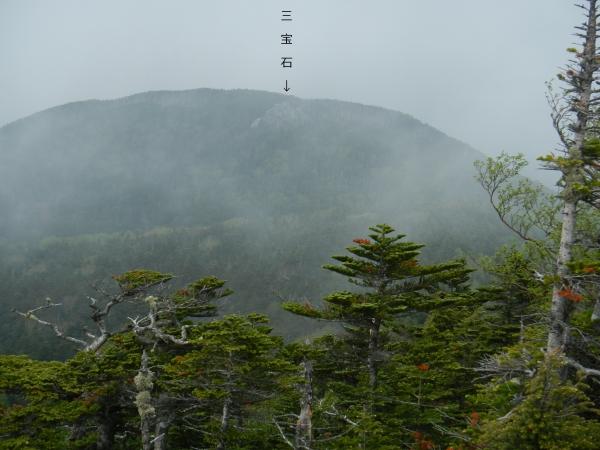 甲武信ヶ岳 074