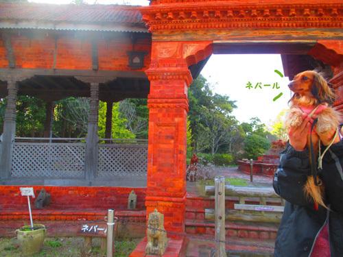 03-24-hamanako17.jpg