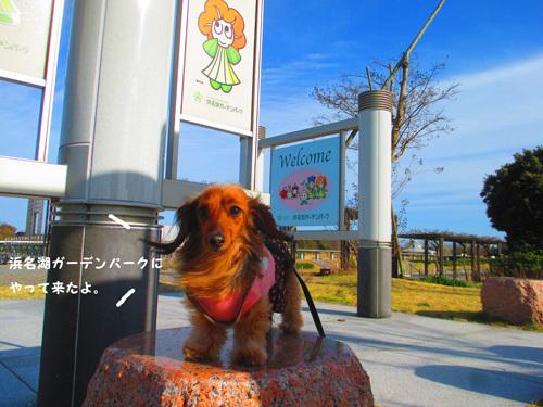 03-24-hamanako2.jpg