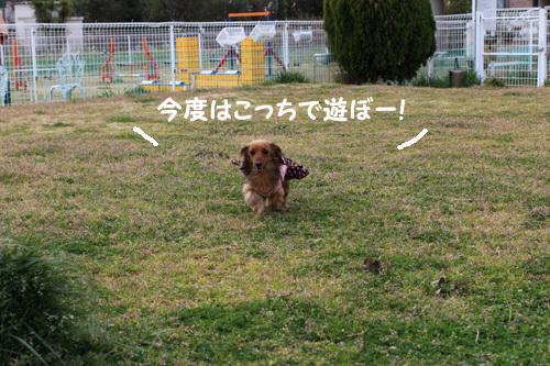 03-25-hamanako-10.jpg