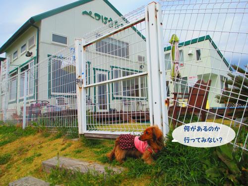 03-25-hamanako78.jpg