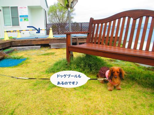 03-25-hamanako80.jpg