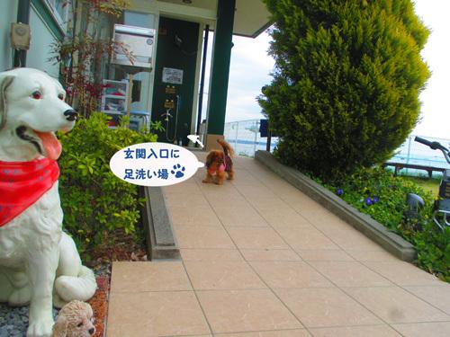 03-25-hamanako85.jpg