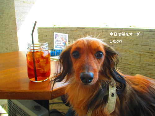 park-cafe3.jpg