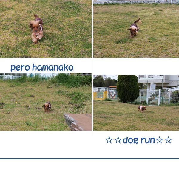 ran.jpg