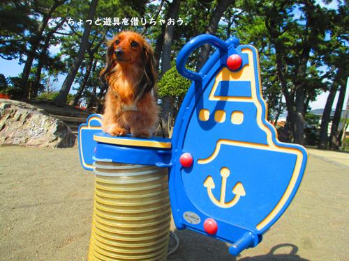sakura-park7.jpg
