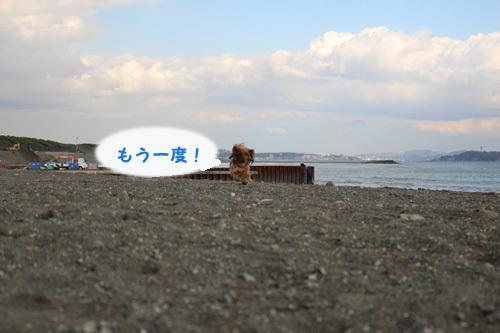 umi-launch10.jpg