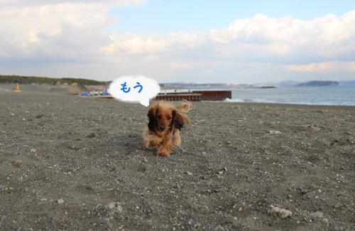 umi-launch8.jpg