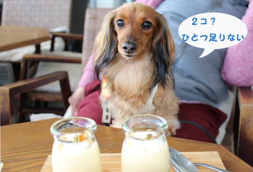 umi-lunch13.jpg