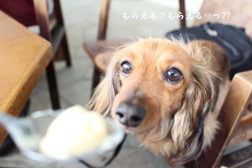umi-lunch15.jpg