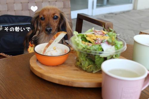 umi-lunch3.jpg