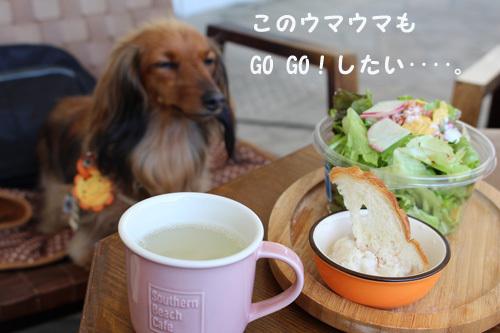 umi-lunch4.jpg