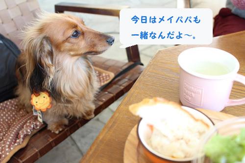 umi-lunch7.jpg