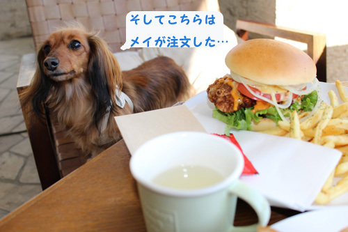 umi-lunch9.jpg