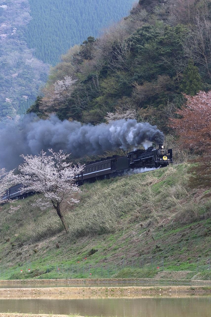2017yamaguti21.jpg