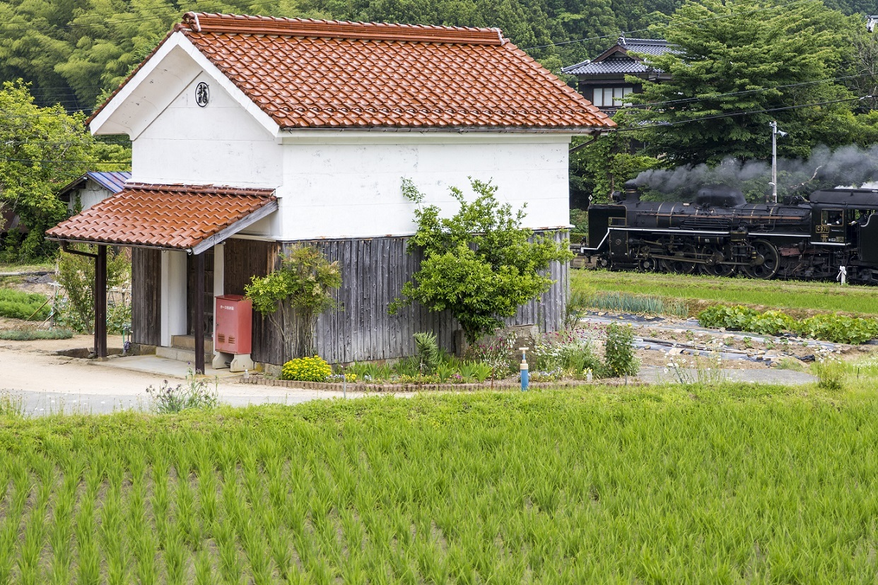 2017yamaguti33.jpg