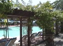 プトゥリバリ1998年プール