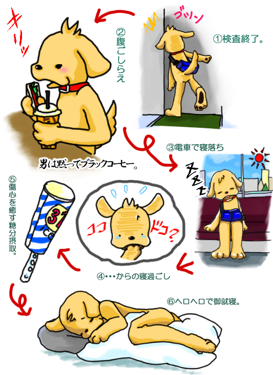 PC犬検診日記