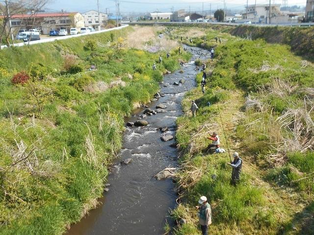 DSCN23470430大胡地区根古屋橋上流の釣りの様子