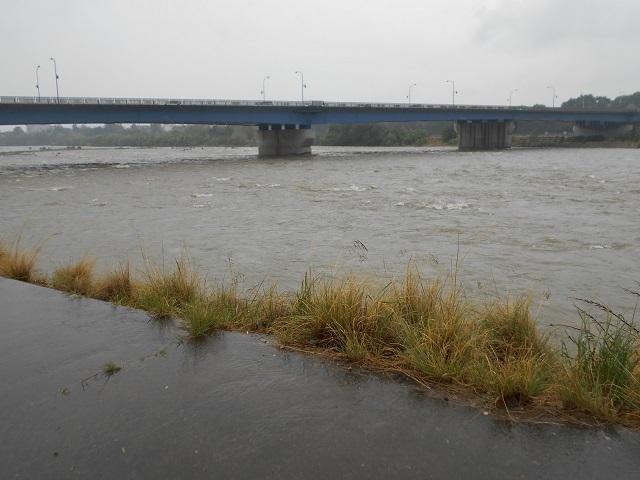 DSCN24320513大渡橋上流今年一番の増水濁りです.jpg