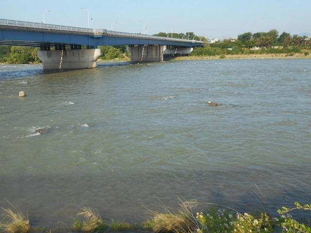 DSCN24650521大渡橋上.jpg