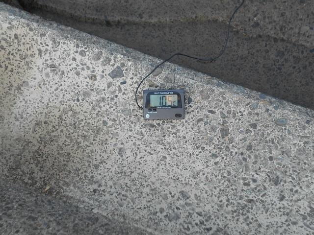 DSCN24660521大渡橋下.jpg