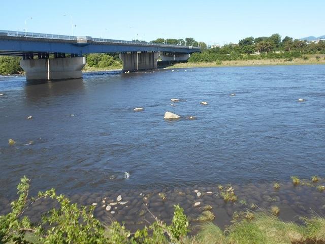 DSCN25270603大渡橋.jpg
