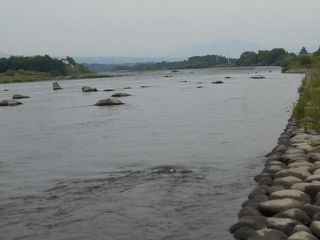 DSCN25980619大渡橋左岸上流.jpg