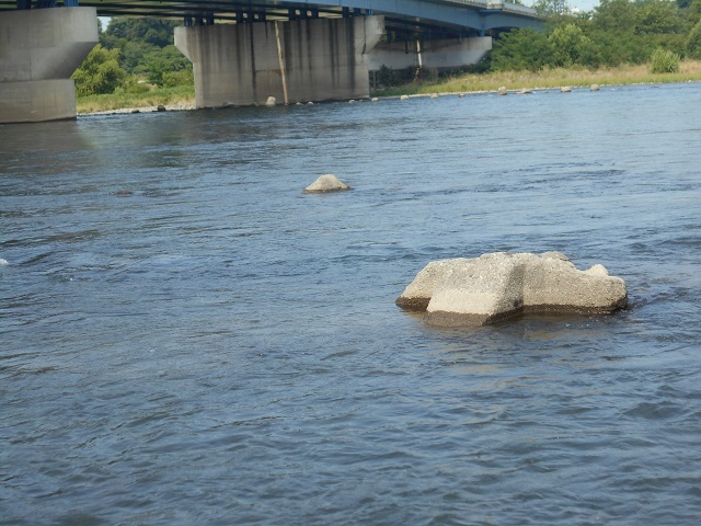 DSCN26020620大渡橋