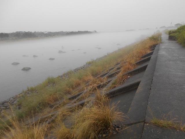 0625DSCN2622大渡橋左岸上流.jpg