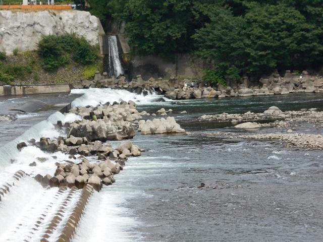0626DSCN2641坂東堰した毛ばり釣りの様子.jpg