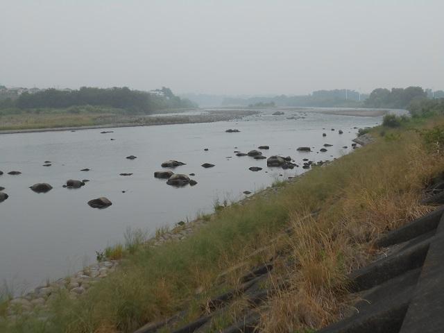 0629DSCN2652大渡橋左岸上流.jpg