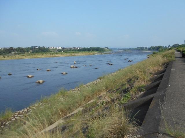 DSCN26920707大渡橋左岸上流.jpg