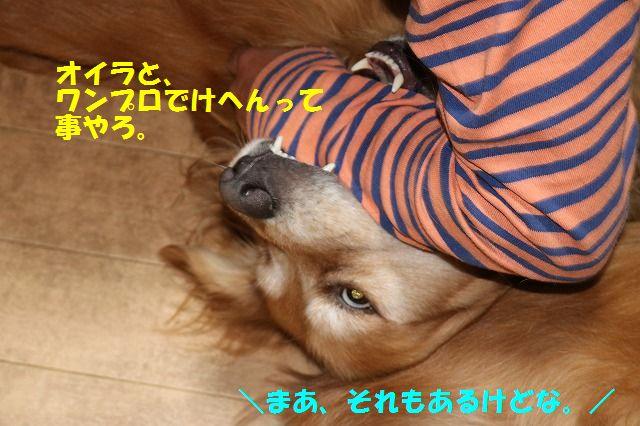 IMG_3357.jpg