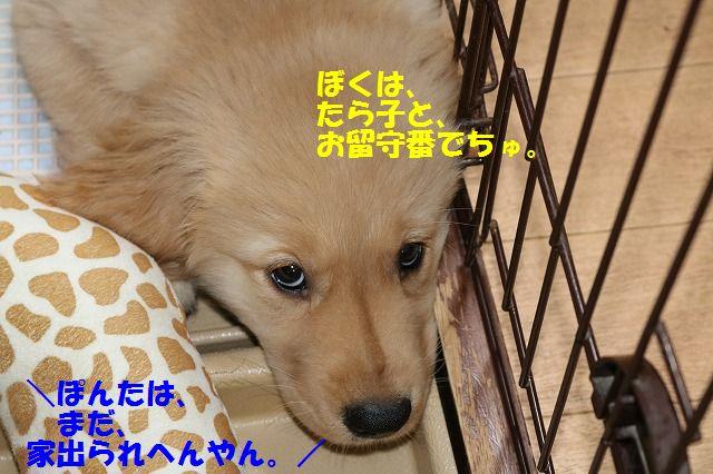 IMG_7735.jpg