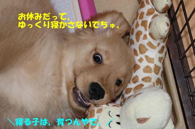IMG_7884.jpg
