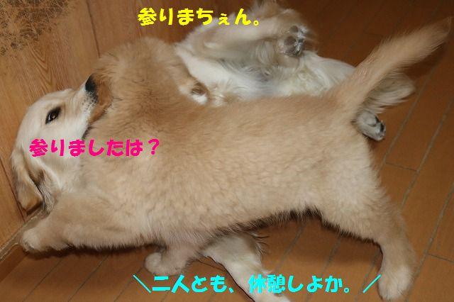 IMG_8236.jpg